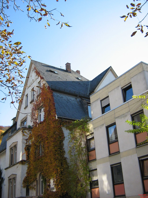 Keller-Thoma-Stiftung-Heidelberg-Wohnheim-Strassenseite